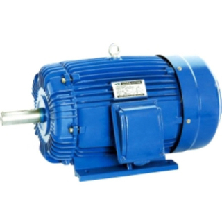 1HP-340HP AEEF Three-Phase Cast Iron Housing Motor